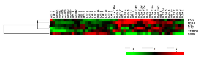 Figure 3:  Analyses of 6 candidate genes in normal, and TNBC characterized as MES, LAR, BLIA and BLIS.