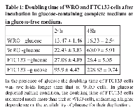 Table 1:  Doubling time of WRO and FTC133 cells after  incubation in glucose-containing complete medium or  in glucose-free medium.