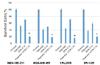 Figure 1:  MDA-MB-231, MDA-MB-468, CRL2335 and BR-1126 (PDX derived TNBC cell line) were treated with CFM-4.16 (10  µM), cisplatin (10µg/ml) or CFM-4.16 (10 µM) plus cisplatin (10µg/ml) for 24 hours.